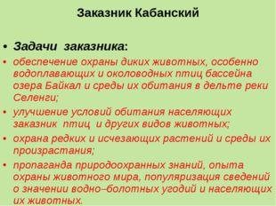 Заказник Кабанский Задачи заказника: обеспечение охраны диких животных, особ