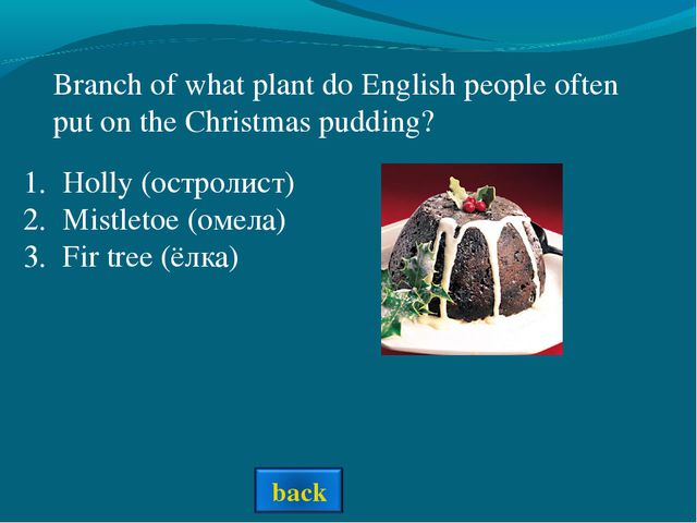 Holly (остролист) Mistletoe (омела) Fir tree (ёлка) Branch of what plant do E...