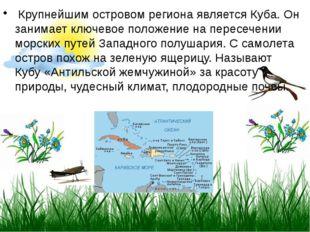 Крупнейшим островом региона является Куба. Он занимает ключевое положение на