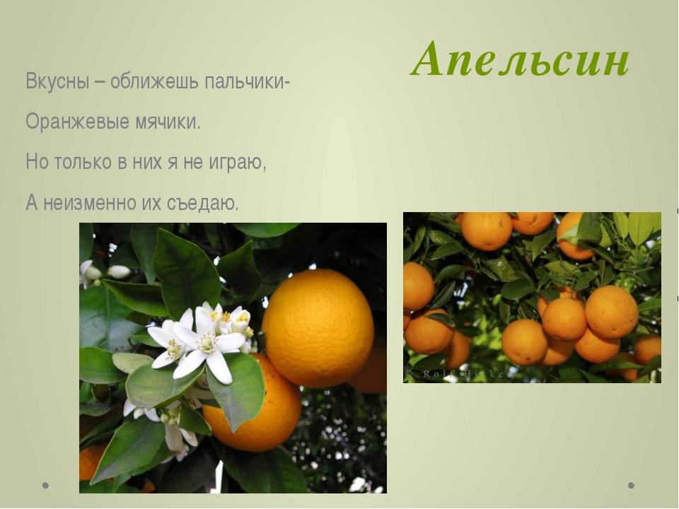 Апельсин Вкусны – оближешь пальчики- Оранжевые мячики. Но только в них я не и...
