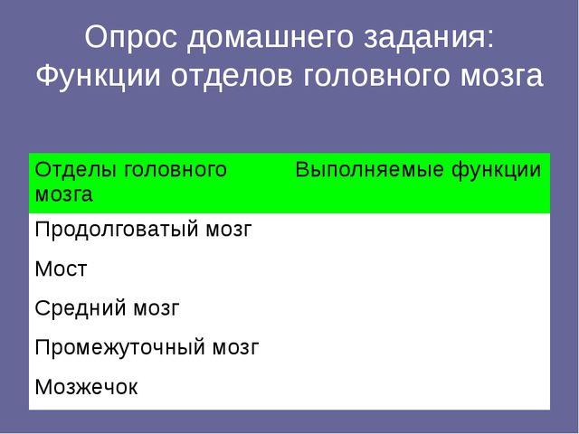 Опрос домашнего задания: Функции отделов головного мозга