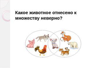 Какое животное отнесено к множеству неверно?