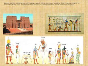 Древние египтяне обожествляли силы природы, зверей, птиц и поклонялись множес
