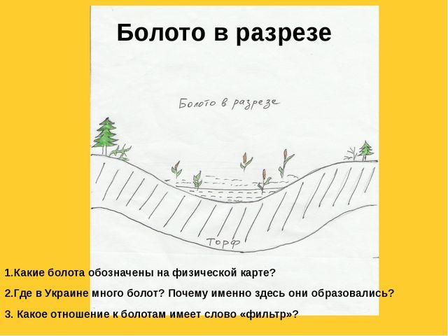 Болото в разрезе 1.Какие болота обозначены на физической карте? 2.Где в Украи...