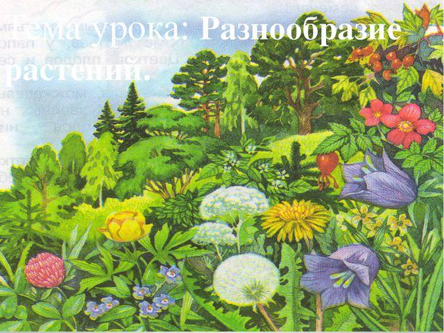 Тема урока: Разнообразие растений.
