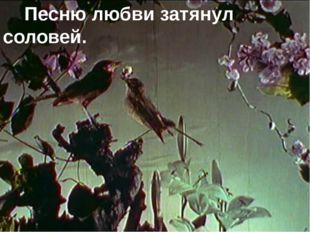 Песню любви затянул соловей.