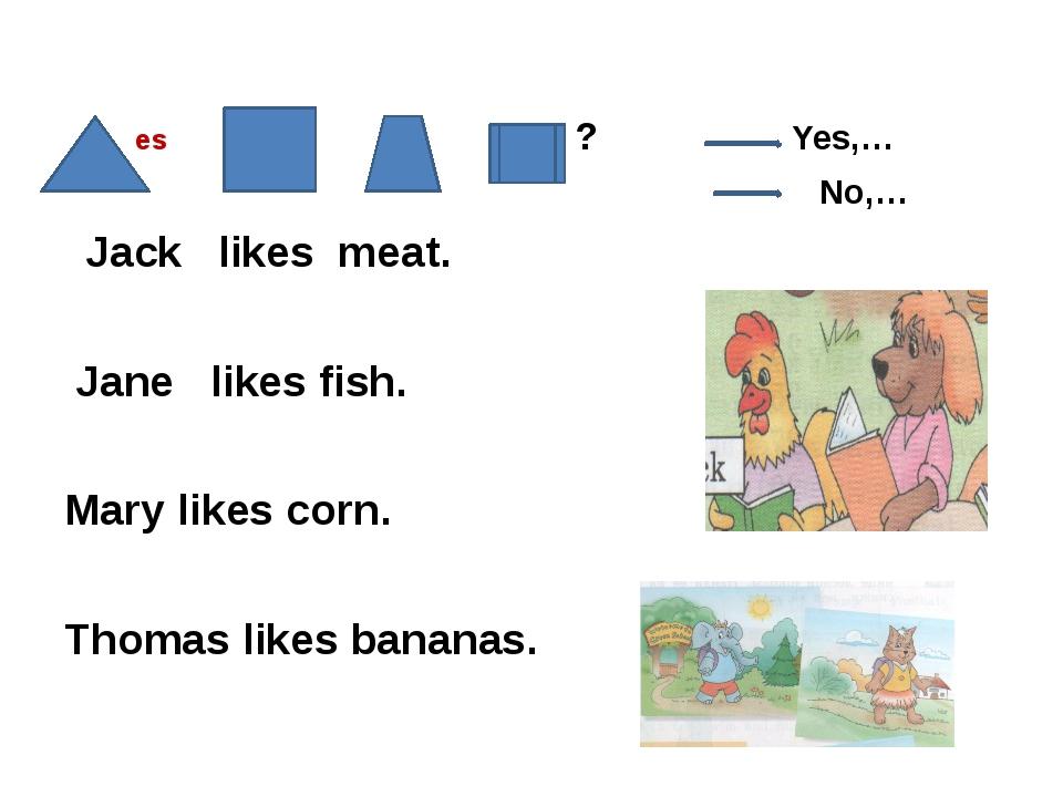 es ? Yes,… No,… Jack likes meat. Jane likes fish. Mary likes corn. Thomas li...