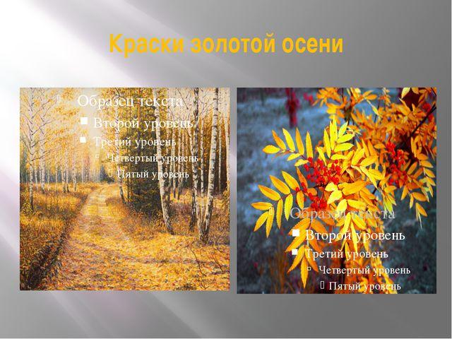 Краски золотой осени