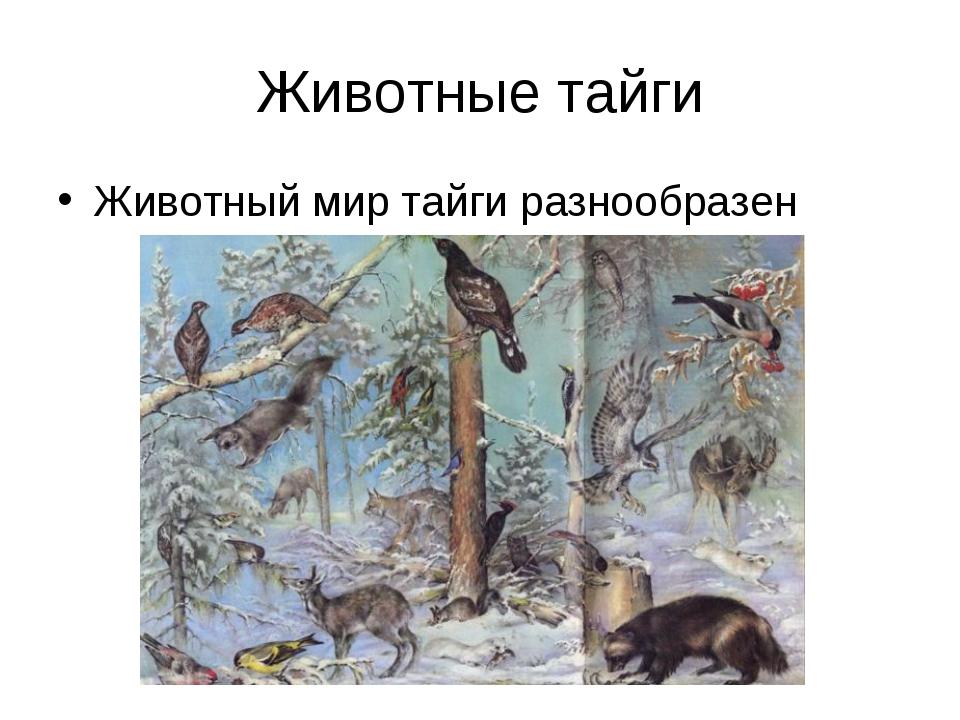 Животные тайги Животный мир тайги разнообразен