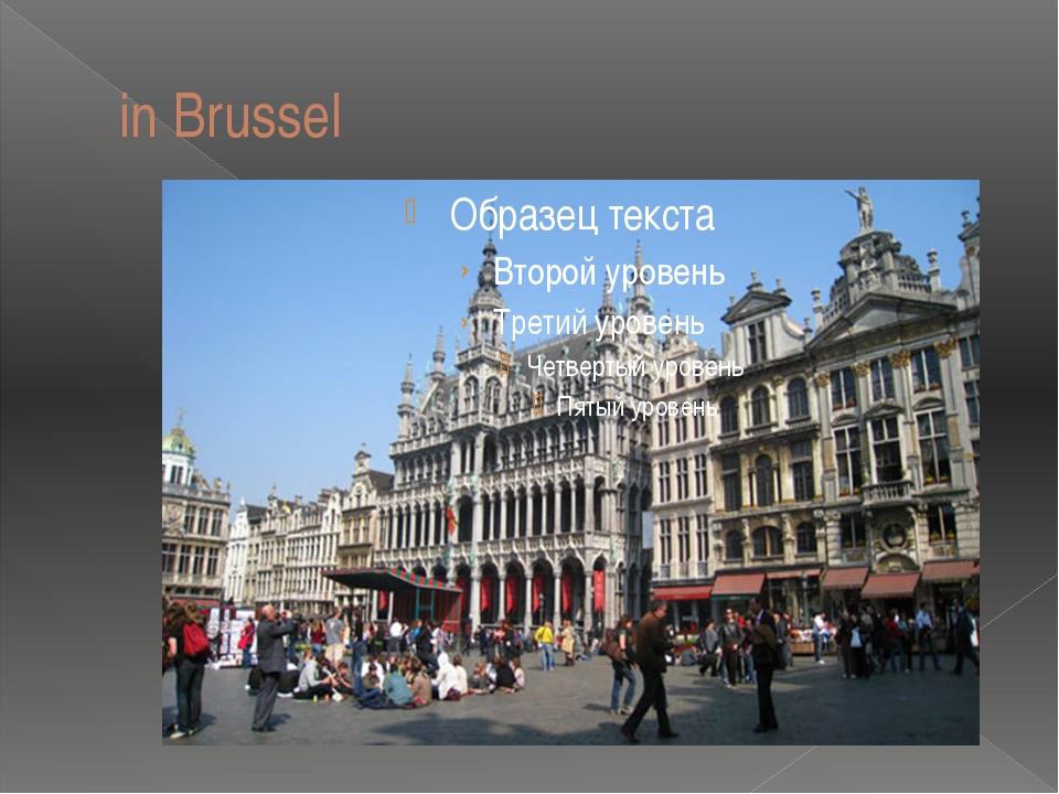 in Brussel