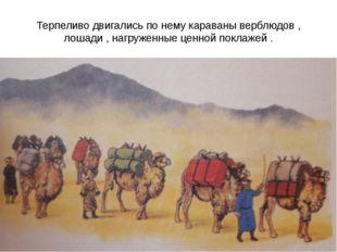 Терпеливо двигались по нему караваны верблюдов , лошади , нагруженные ценной