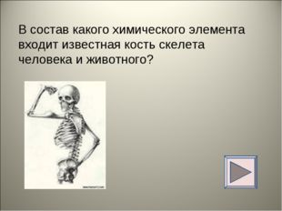 В состав какого химического элемента входит известная кость скелета человека