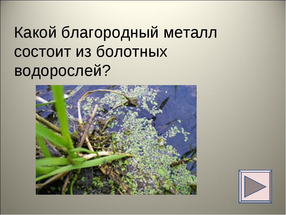 Какой благородный металл состоит из болотных водорослей?