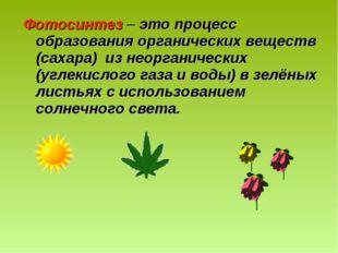 Фотосинтез – это процесс образования органических веществ (сахара) из неорган