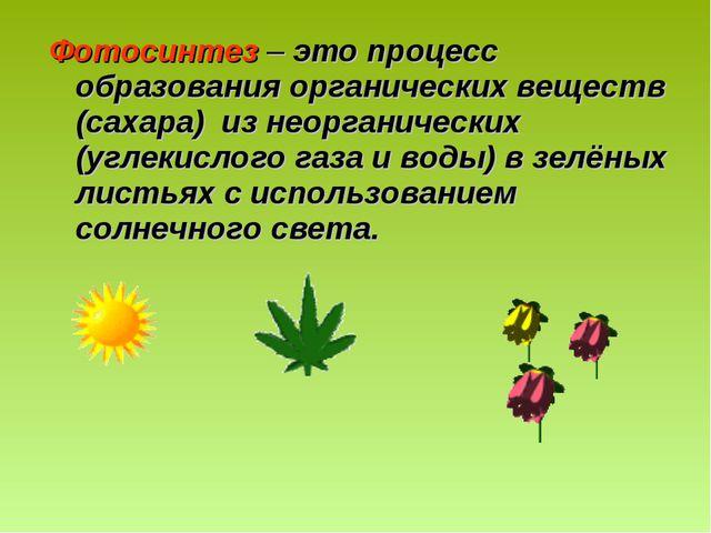 Фотосинтез – это процесс образования органических веществ (сахара) из неорган...