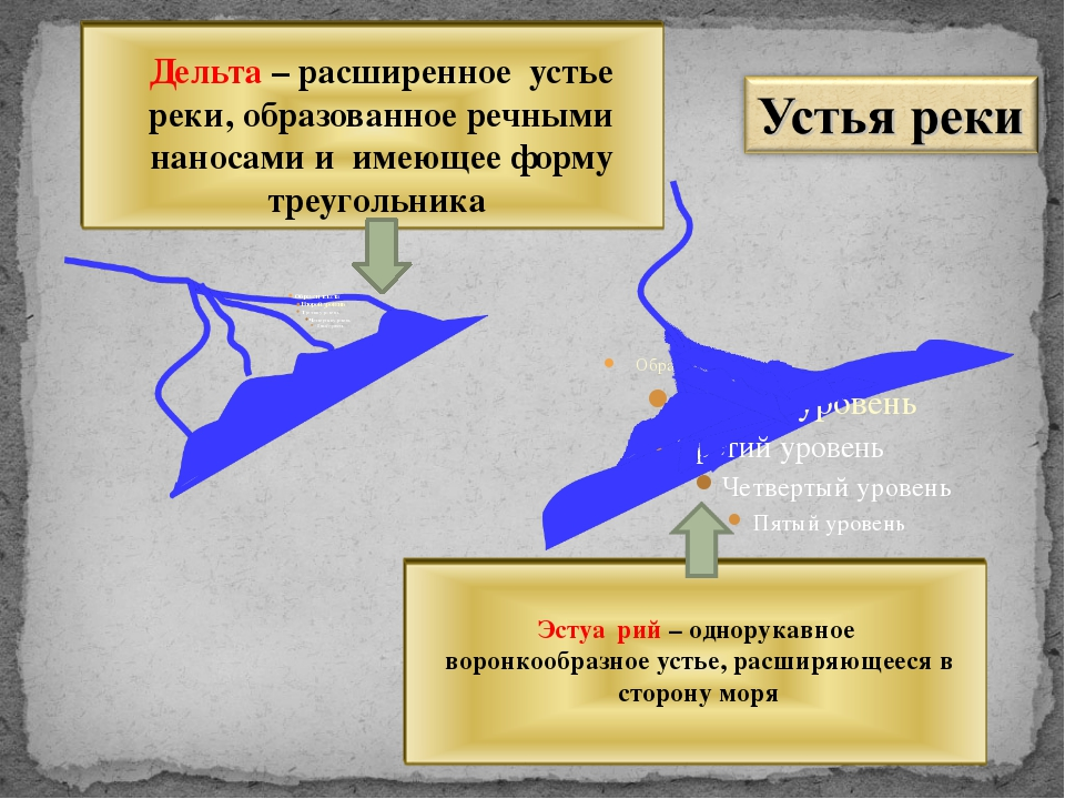 Дельта – расширенное устье реки, образованное речными наносами и имеющее форм...