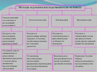 Методы изучения наследственности человека Генеалогический (составление и исс