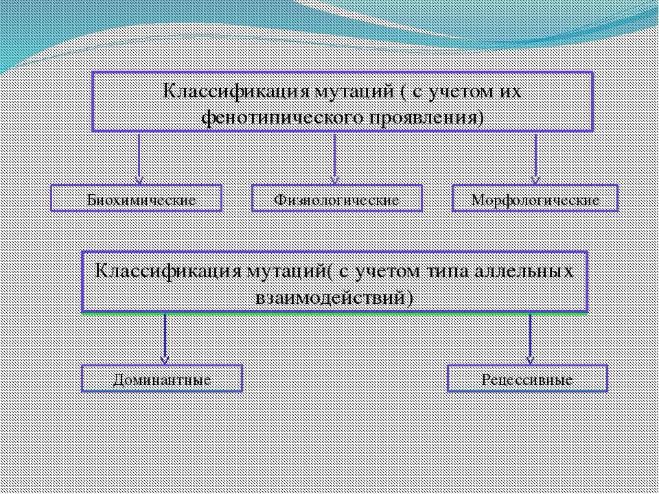Классификация мутаций ( с учетом их фенотипического проявления) Биохимически...