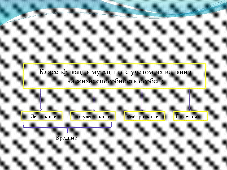 Классификация мутаций ( с учетом их влияния на жизнеспособность особей) Лета...