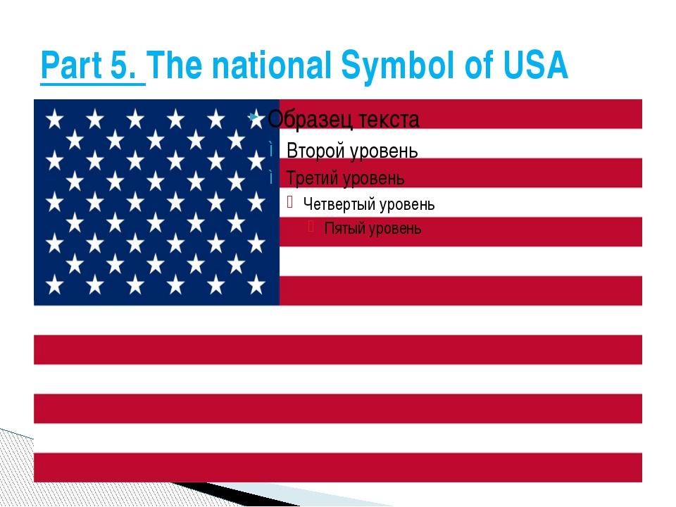 Part 5. The national Symbol of USA