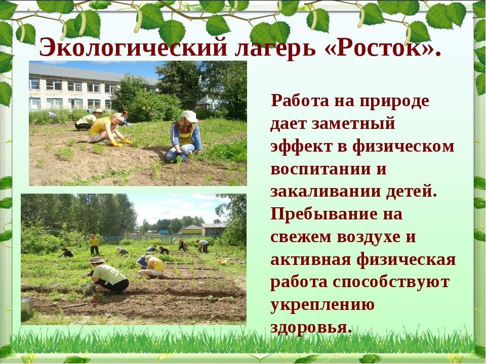 Экологический лагерь «Росток». Работа на природе дает заметный эффект в физич...