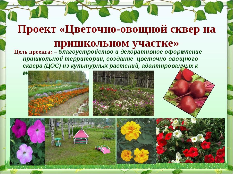 Проект «Цветочно-овощной сквер на пришкольном участке» Цель проекта: – благоу...