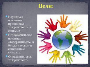 Научиться основным принципам толерантности в социуме Познакомиться с понятием