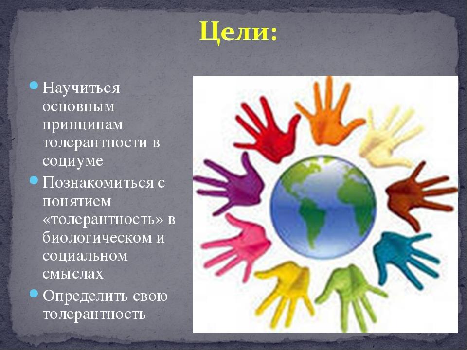 Научиться основным принципам толерантности в социуме Познакомиться с понятием...