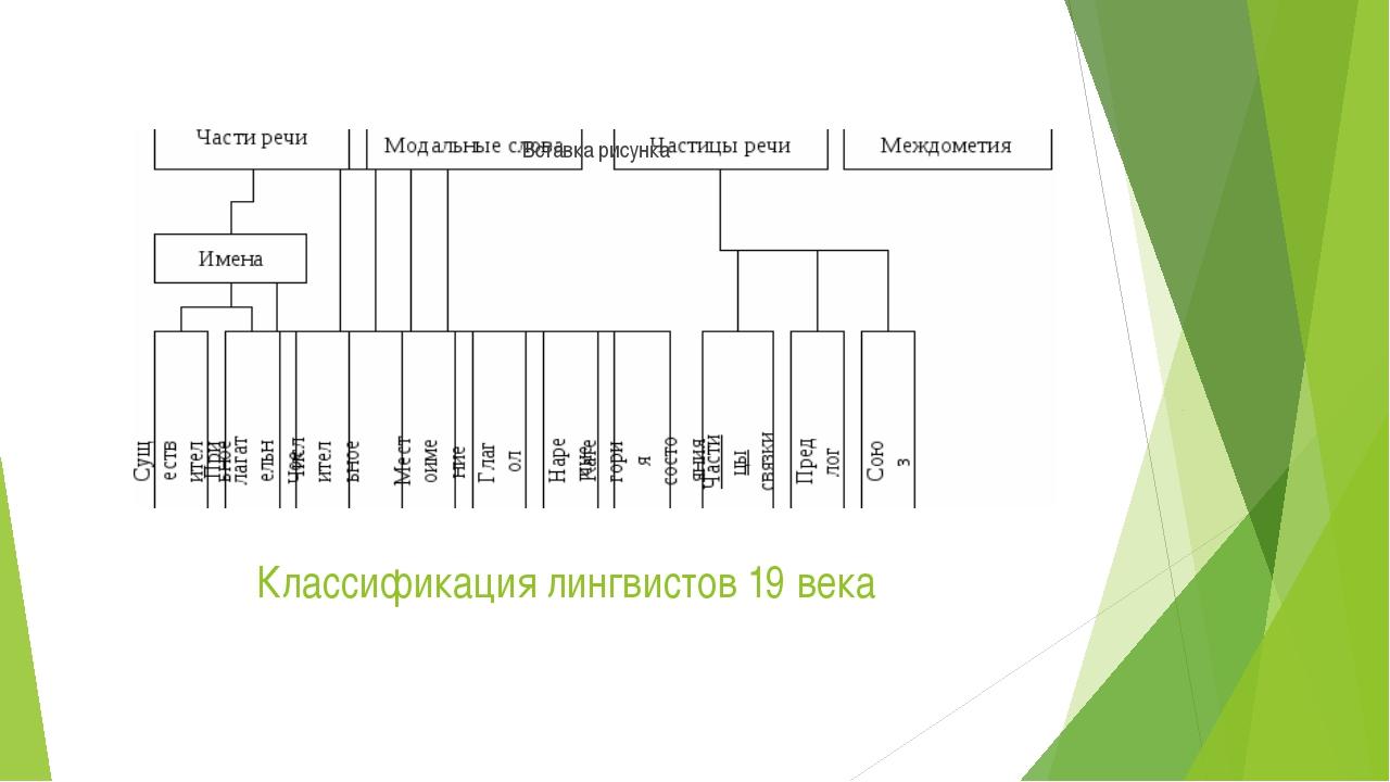 Классификация лингвистов 19 века