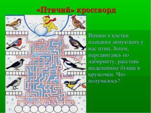 «Птичий» кроссворд Впиши в клетки названия зимующих у нас птиц. Затем, передв