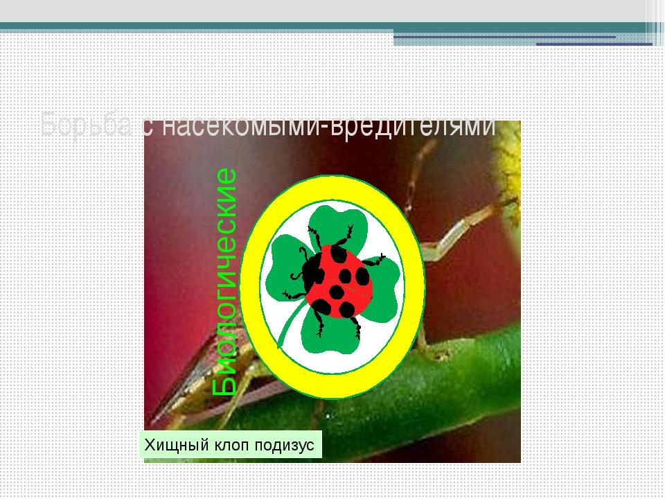 Способы защиты растений Химические Биологические Борьба с насекомыми-вредител...
