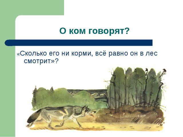 О ком говорят? «Сколько его ни корми, всё равно он в лес смотрит»?