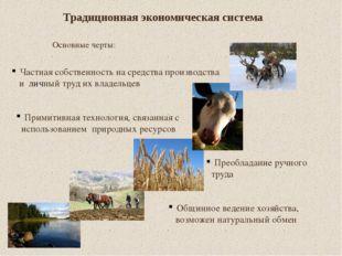 Традиционная экономическая система Основные черты: Частная собственность на