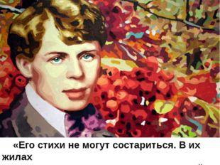«Его стихи не могут состариться. В их жилах течёт вечно молодая кровь вечно