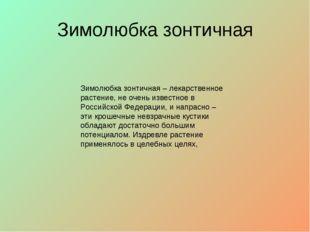 Зимолюбка зонтичная Зимолюбка зонтичная – лекарственное растение, не очень из