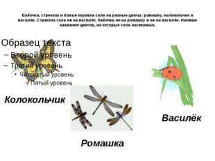 Бабочка, стрекоза и божья коровка сели на разные цветы: ромашку, колокольчик