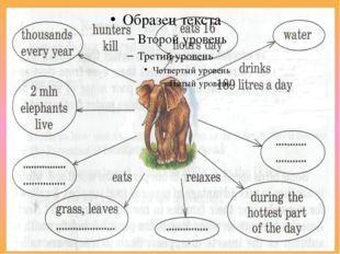 Elephants eat grass. I have two apples. Translate into Uzbek: Translate into