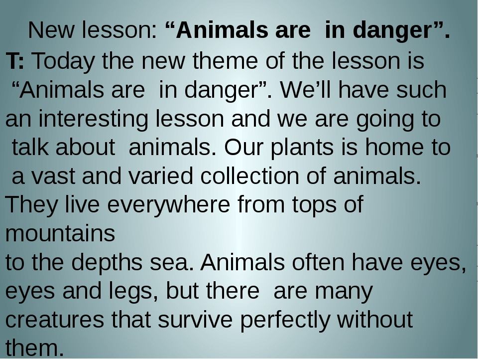 New words   an animal – an elephant a tiger to drink to live danger a monkey...