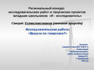 Региональный конкурс исследовательских работ и творческих проектов младших шк