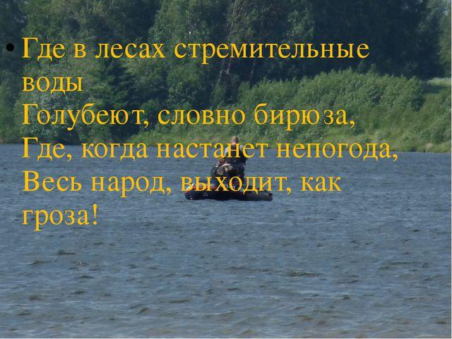 Где в лесах стремительные воды Голубеют, словно бирюза, Где, когда настанет н...
