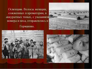 Освенцим. Волосы женщин, сожженных в крематории, в аккуратных тюках, с указан