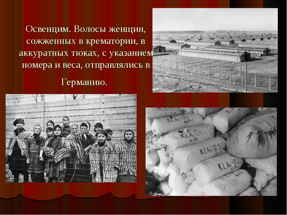Освенцим. Волосы женщин, сожженных в крематории, в аккуратных тюках, с указан...