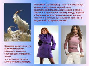 КАШЕМИР (CASHMERE) – это тончайший пух (подшерсток) высокогорной козы кашемир
