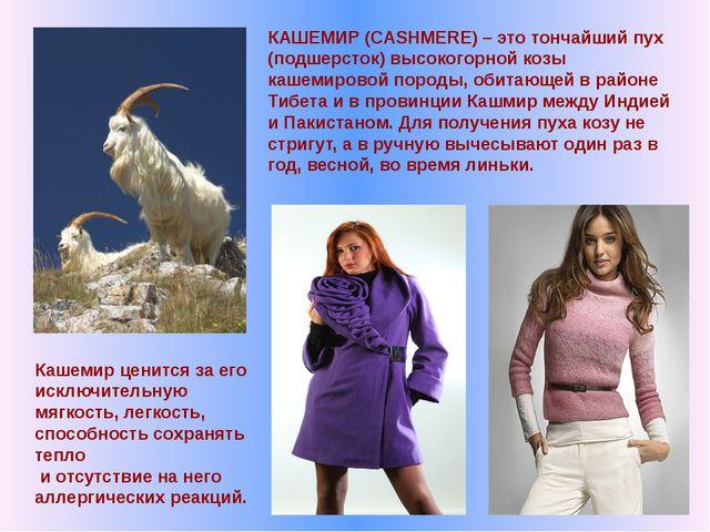 КАШЕМИР (CASHMERE) – это тончайший пух (подшерсток) высокогорной козы кашемир...