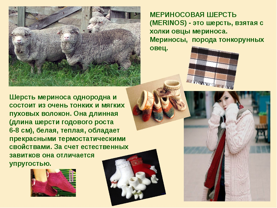 МЕРИНОСОВАЯ ШЕРСТЬ (MERINOS) - это шерсть, взятая с холки овцы мериноса. Мери...