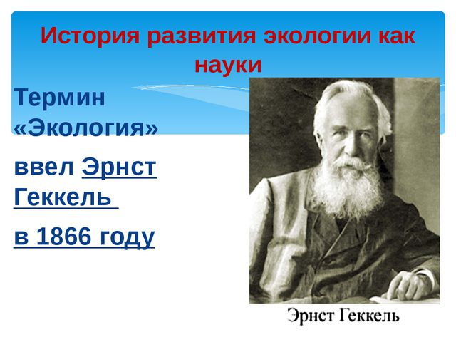 Термин «Экология» ввел Эрнст Геккель в 1866 году История развития экологии ка...