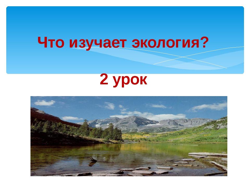 Что изучает экология? 2 урок