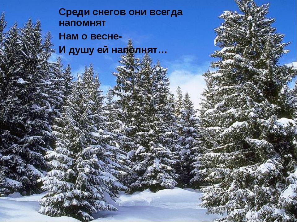 Среди снегов они всегда напомнят Нам о весне- И душу ей наполнят…
