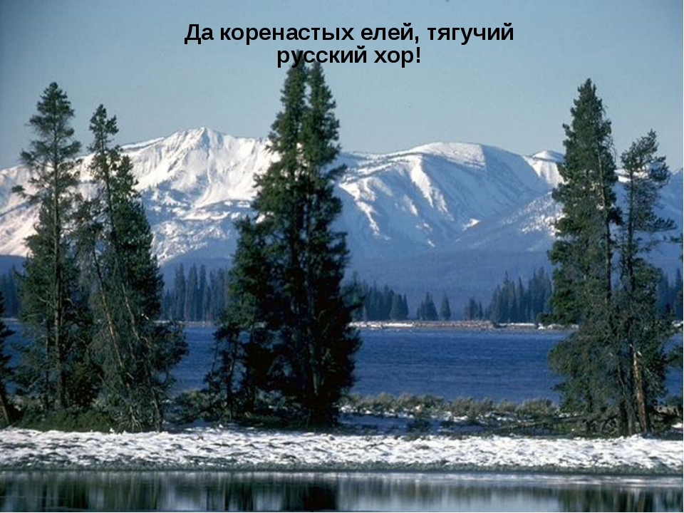 Да коренастых елей, тягучий русский хор!