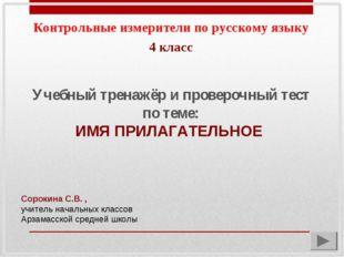 Контрольные измерители по русскому языку Учебный тренажёр и проверочный тест